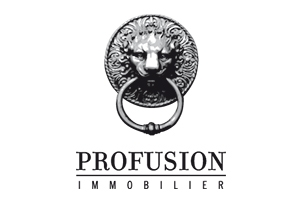 profusion immobilier