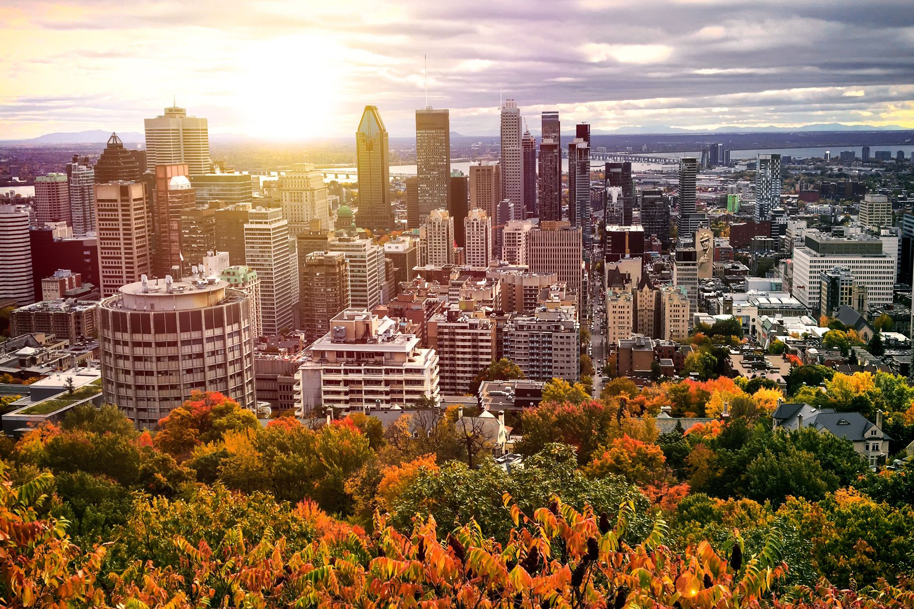 meilleurs courtiers immobiliers outremont montreal